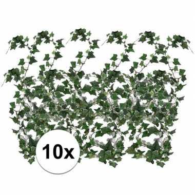 10x klimop slinger hedera helix 180 cm