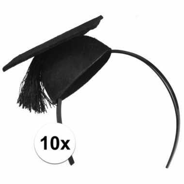 10x mini geslaagd hoedjes op diadeem
