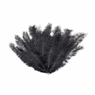 12 lange zwarte pluim veren