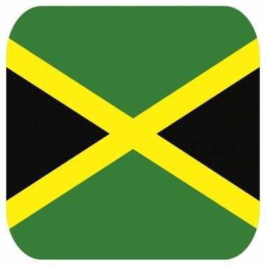 15 vierkante bierviltjes jamaica thema