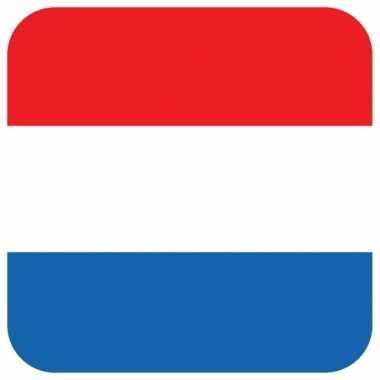 15 vierkante bierviltjes nederlands thema