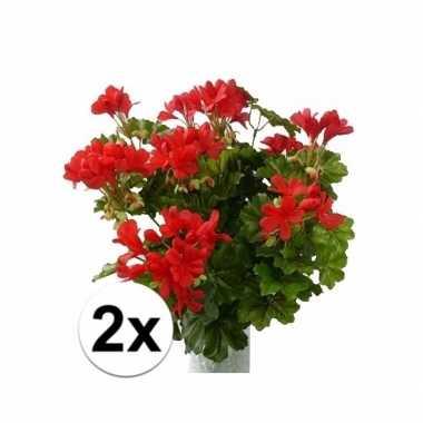 2 stuks rode namaak geranium 40 cm