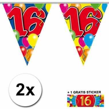 2 vlaggenlijnen 16 jaar met gratis sticker