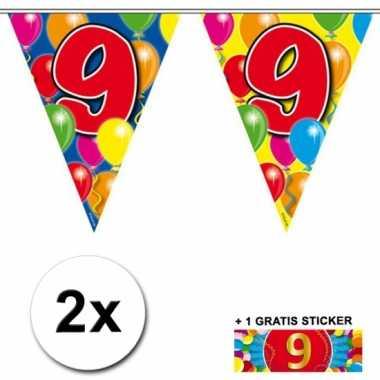 2 vlaggenlijnen 9 jaar met gratis sticker
