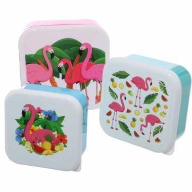 3x broodtrommel/lunchbox tropische flamingo print