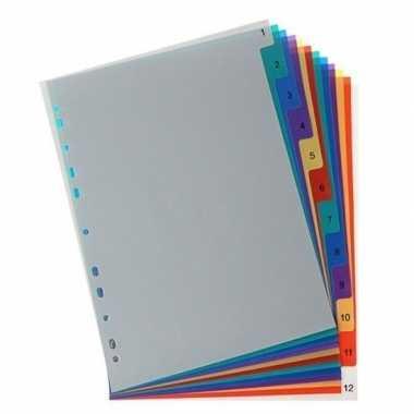 A4 tabbladen van plastic 12 stuks