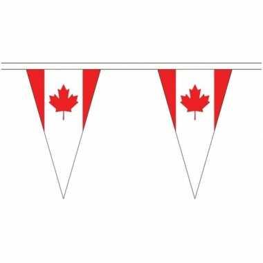 Canada landen punt vlaggetjes 20 meter