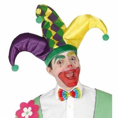 Carnavals narrenhoed paars/geel/groen