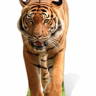 Decoratieborden tijger