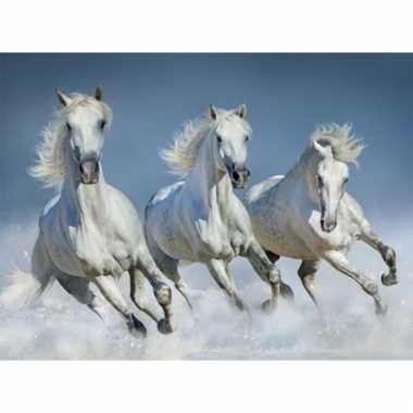 Dieren magneet 3d witte paarden