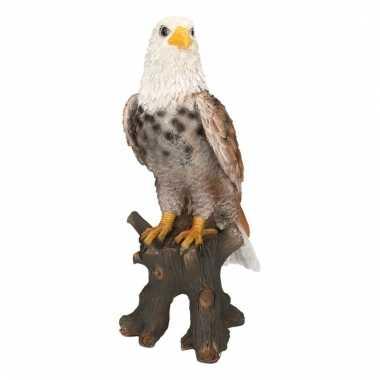 Dierenbeeld adelaar 36 cm