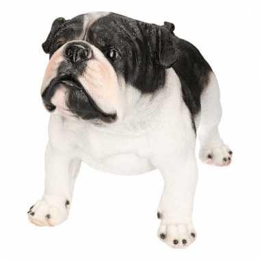 Dierenbeeld engelse bulldog staand 41 cm