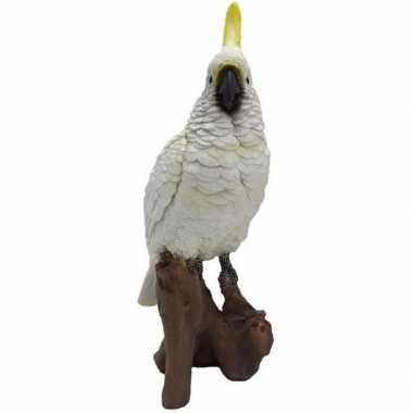 Dierenbeeld witte kaketoe 25 cm