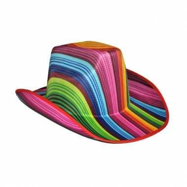 Disco cowboyhoed gekleurd