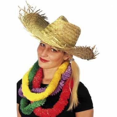 Feest hoed hawaii strand