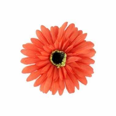 Haarbloem gerbera oranje