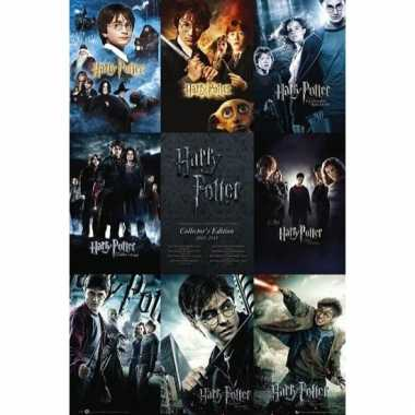 Harry potter movie poster 61 x 91 cm