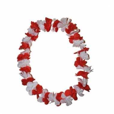 Hawaii slinger rode en witte bloem