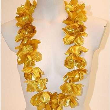 Hawaiiaanse krans goud
