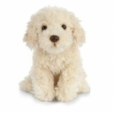 Huisdieren knuffels labradoodle hond beige 25 cm