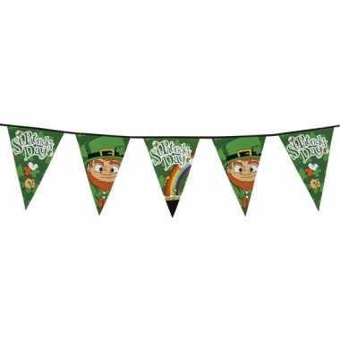 Ierse st patricks day vlaggenlijn 8 meter