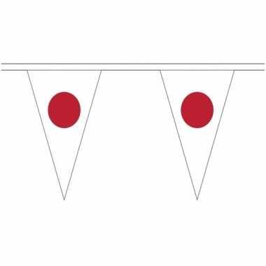 Japan landen punt vlaggetjes 5 meter