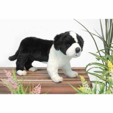 Levensechte pluche border collie pup 39 cm