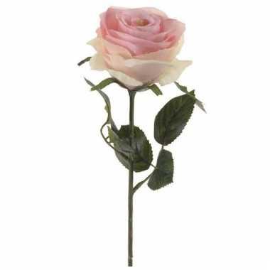Licht roze roos op steel 45 cm