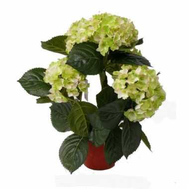 Lichtgroene namaak hortensia in pot 36 cm