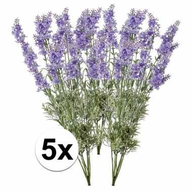 Lichtpaarse lavendel 40 cm 5 stuks