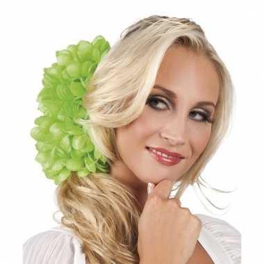 Lime flamenco haarbloem 20 cm