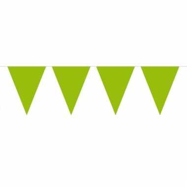 Lime groene slinger met vlaggetjes 10 meter
