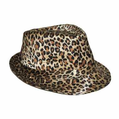 Luipaarden print hoedjes