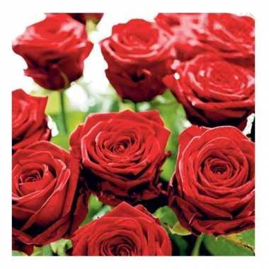 Lunch servetten rode rozen 33 cm