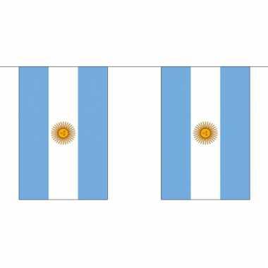 Luxe argentijnse vlaggenlijn 3 meter
