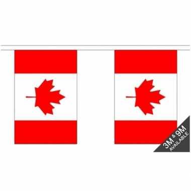 Luxe canadese vlaggenlijn 3 meter