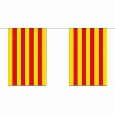 Luxe catalaanse vlaggenlijn 3 meter