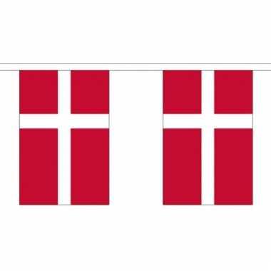 Luxe denemarken vlaggenlijn 3 meter