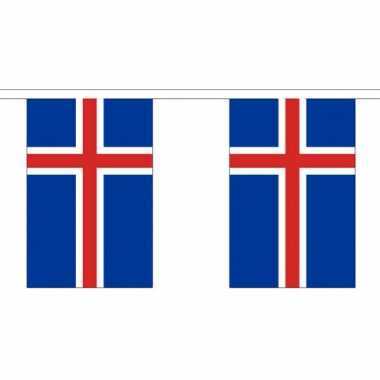Luxe ijslandse vlaggenlijn 3 meter