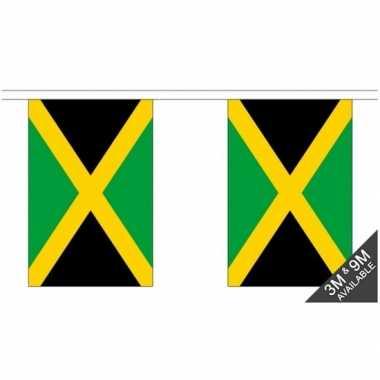 Luxe jamaicaanse vlaggenlijn 3 meter