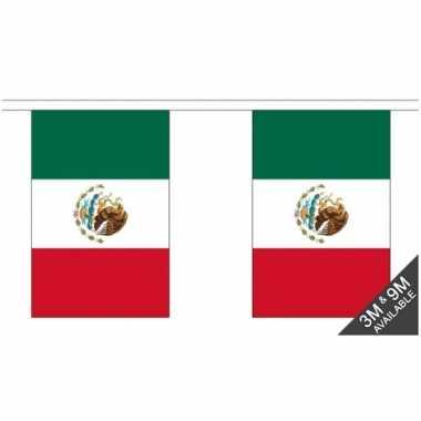 Luxe mexicaanse vlaggenlijn 3 meter