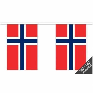 Luxe noorse vlaggenlijn 3 meter
