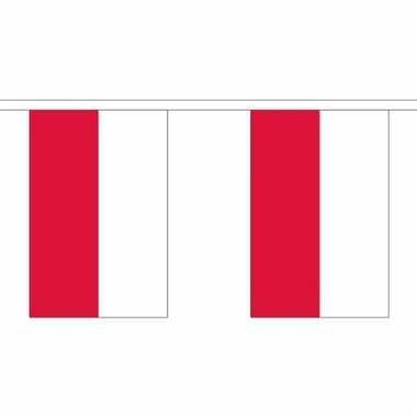 Luxe poolse vlaggenlijn 3 meter