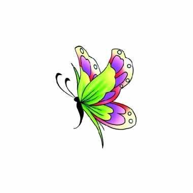 Meisjes glitter vlinder tattoo groen/paars