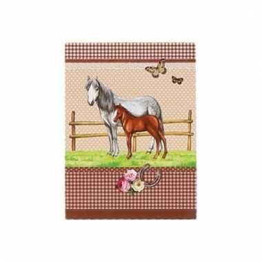 Memo boekje paarden a7