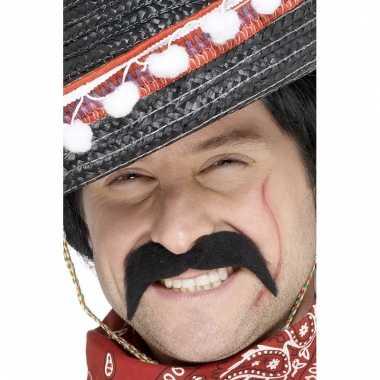 Mexicaanse feest snorren