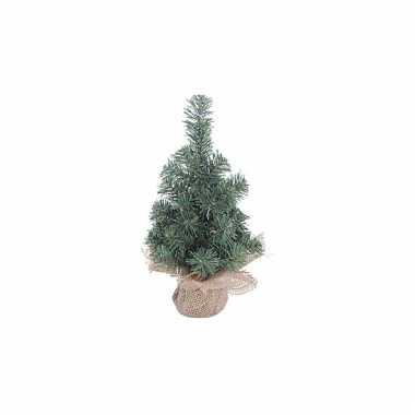 Mini kerstboompje met houten voet