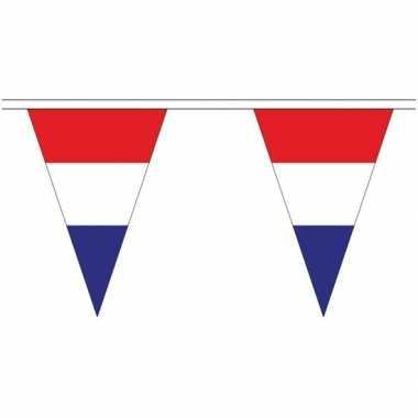 Nederland landen punt vlaggetjes 20 meter
