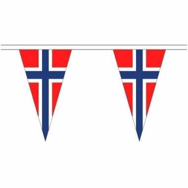 Noorwegen landen punt vlaggetjes 5 meter