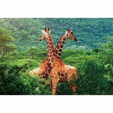 Onderlegger met giraffe print